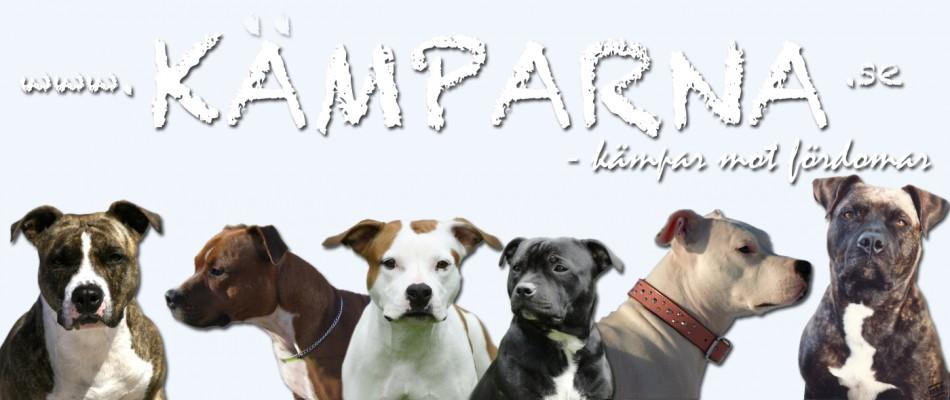 Kamphund - Kämpar mot Fördomar